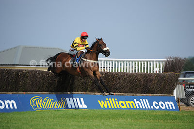 Handicap Steeple Chase with winner Piment D'Estruval