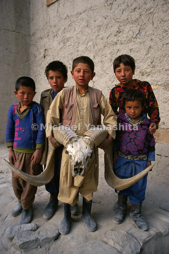 Ovis polii, better known as the Marco Polo sheep, in honor of the traveler who first wrote about it for a western audience, is known for its massive spiraling horns.  With spans averaging 140 cm (55 in), the horns are prized as trophies, but are also used for building fences.  Wakhan Corridor, Afghanistan