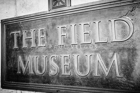 Chicago Field Museum Sign in Black and White