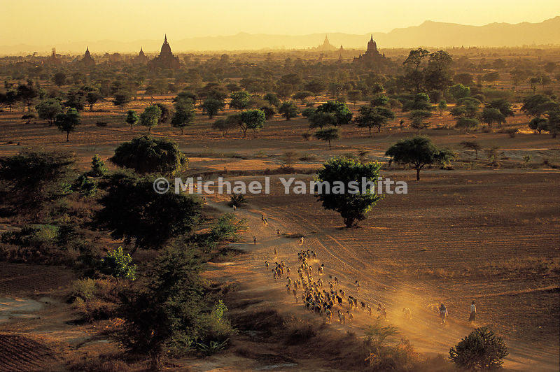 Sunset gives Bagan a mysterious timeless charm.