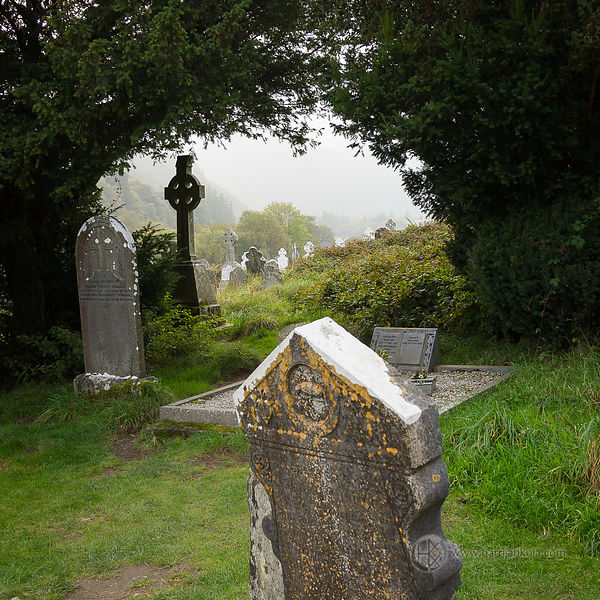 Ireland - Glendalough (Tombstones II)