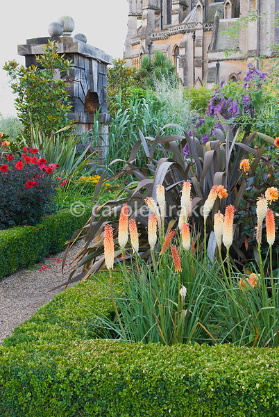 Lushly planted box edged borders include Kniphofia 'Painted Lady', dahlias, buddleia, phormiums and rudbeckia with Arundel Ca...