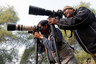 Photographers in Keoladeo National Park, Bharatpur, India