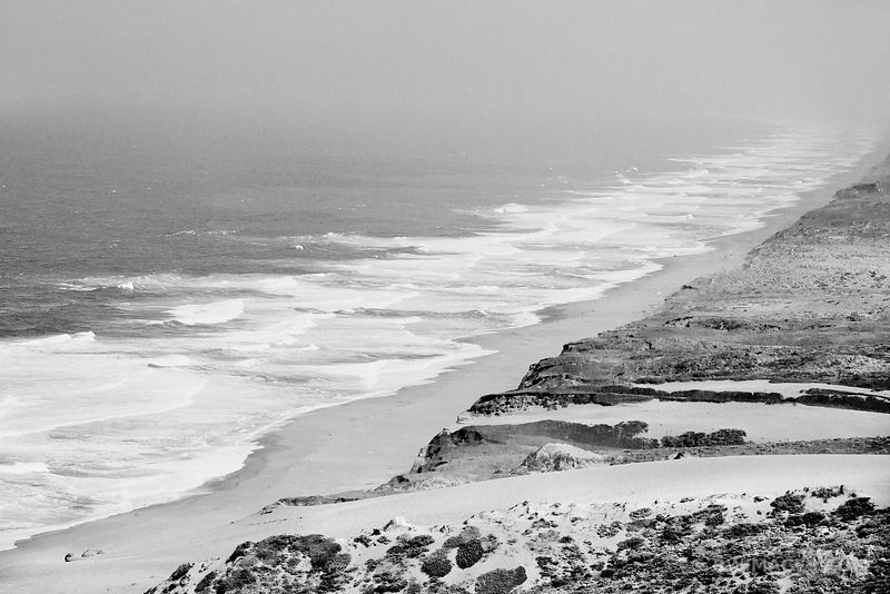 THE GREAT BEACH POINT REYES NATIONAL SEASHORE CALIFORNIA BLACK AND WHITE