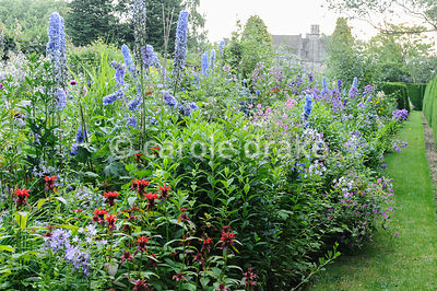 Double herbaceous borders framed with clipped box and tall yew hedges include delphiniums, monardas, campanulas and poppies. ...