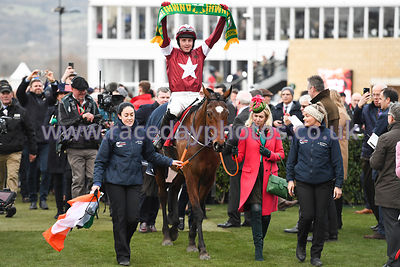 Tiger_Roll_winners_enclosure_13032019-2