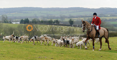 Hounds arriving at the meet at Bleak House - The Cottesmore Hunt at Bleak House