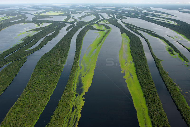 Aerial view of Anavilhanas Archipelago, in the Rio Negro, Amazonas, Brazil, February 2011.