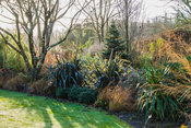 Border in the Foliage garden combines phormiums, grasses and shrubs. RHS Garden Rosemoor, Great Torrington, Devon, UK