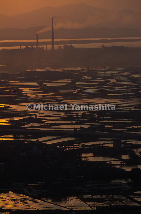 Pearl River Delta, Nanhai Fish Ponds & Rice Paddies. Entire delta looked this way before the economic boom..Nanhai, China