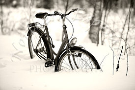 Bicycle_in_snow_b_w