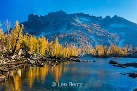 THE AUTUMN LARCHES OF LEPRECHAUN LAKE