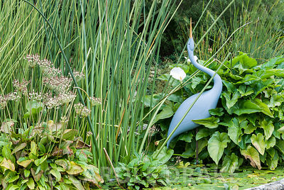 Heron by Michael Lythgoe in basket pond from the 1851 Great Exhibition, the centre piece of the Knot garden. Bourton House, B...