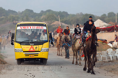 A public school bus passes tourists taking camel rides at the Pushkar Camel Mela, Pushkar, India.