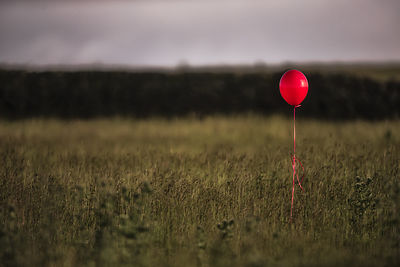 Anyone remember the old film The Red Balloon? so sad!