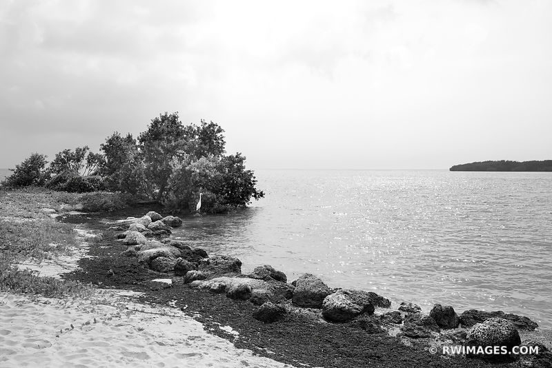 SOMBRERO BEACH MARATHON FLORIDA KEYS BLACK AND WHITE
