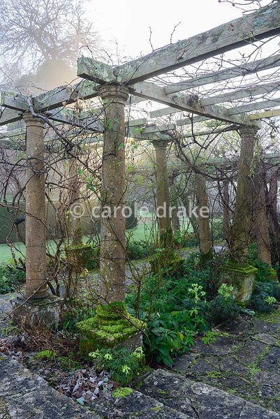 Vine covered pergola in the Fountain Court at Mapperton, Dorset