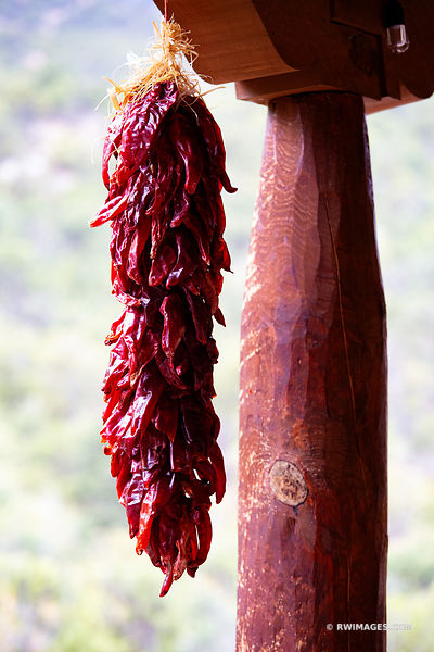 CHILE PEPPERS RISTRA HANGING NORTHERN NEW MEXICO COLOR VERTICAL