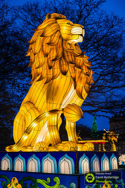 Longleat_Festival_of_Light-7