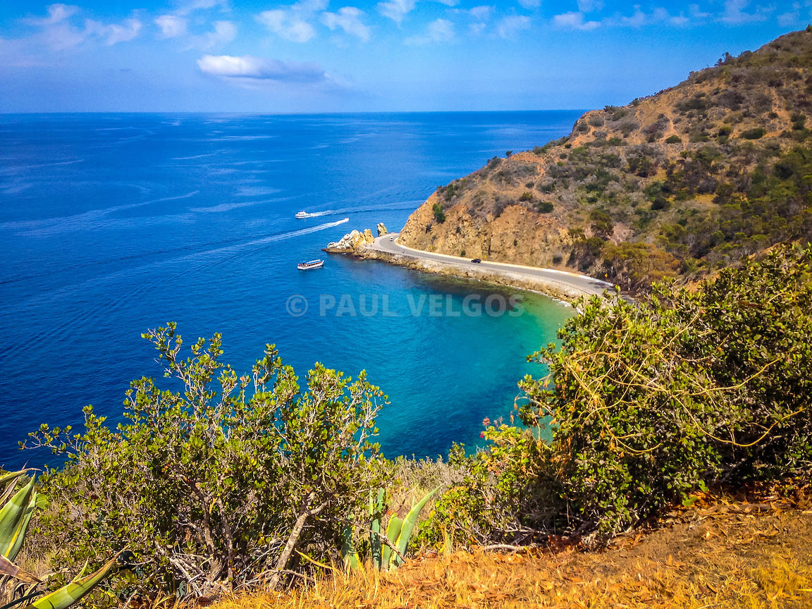 Catalina Island Lover's Cove Picture