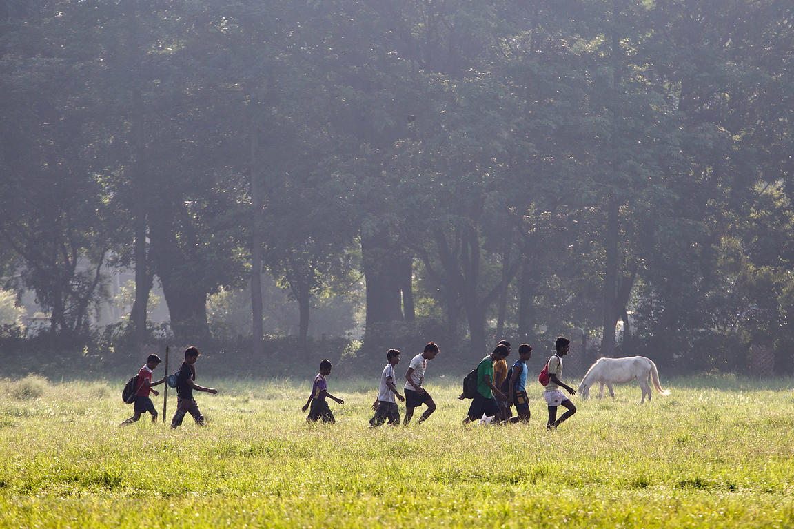 A group of men pass a wild white horse as they walk to the staging area for their cricket game on the Maidan, Kolkata, India....