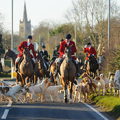 The Cottesmore Hunt Boxing Day Meet in Oakham 26/12