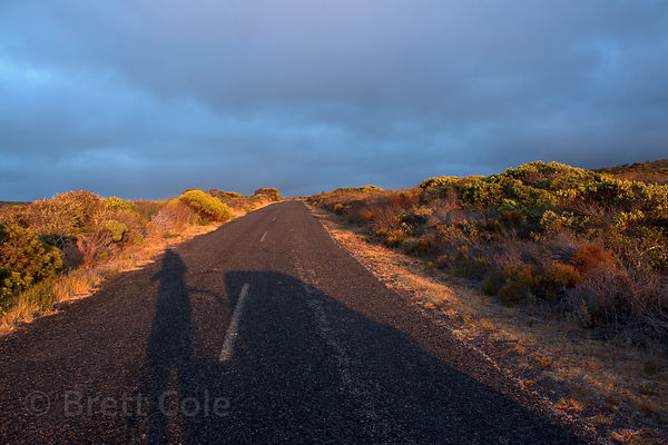 Early morning light on the road at Bordjesrif, Cape Peninsula, South Africa