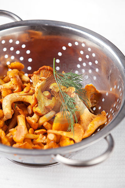Raw chanterelles in metal colander on white background texture