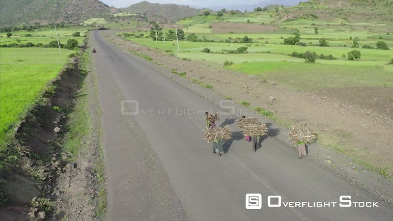 Kids carrying large bundles of wood Ethiopia