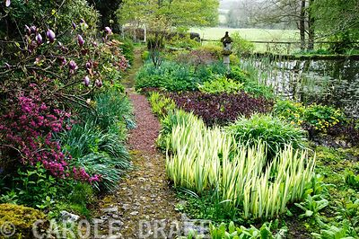 Lower pond with stone temple lantern and planting including Iris pallida 'Aurea Variegata', Lysimachia 'Firecracker', Caltha ...