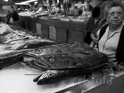 a fish stall at the Mercado Central