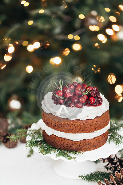 Gingerbread cake with cranberries and frosted icing