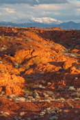 Evening Light Over Valley of Fire