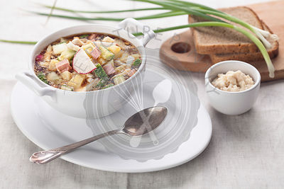 Cold kefir soup with chopped vegetables and meat