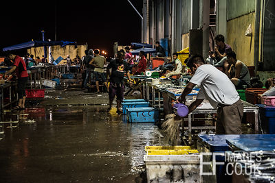 2am at the Kota Kinabalu Fish Market, Sabah, Borneo, March 2018