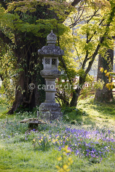 A stone temple lanterns surrounded by spring flowers in the Japanese garden at Heale House, Middle Woodford, Wiltshire