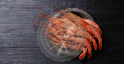 Raw fresh Prawn on metal plate on black burned wooden background copy space