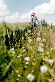Little girl in a meadow 3
