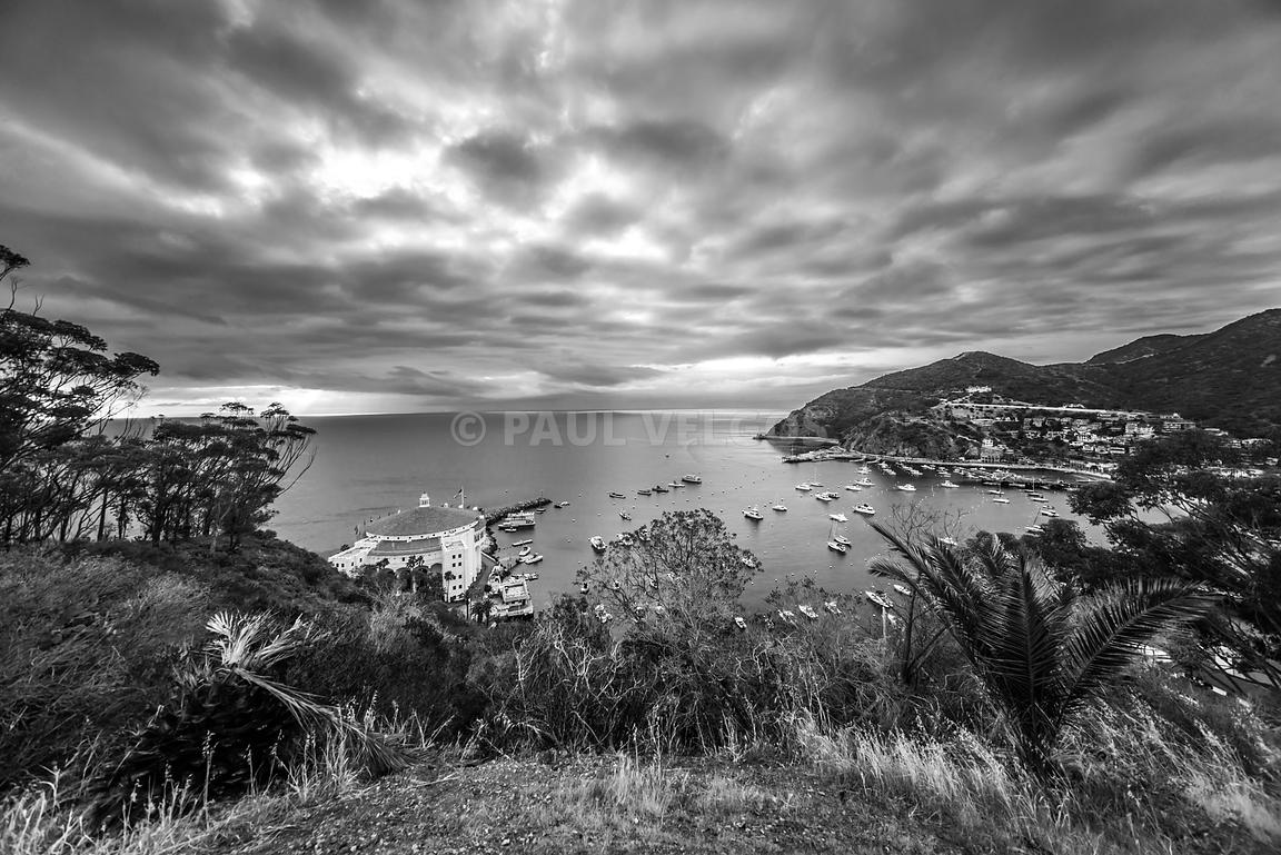 Catalina Island Avalon Bay Black and White Picture