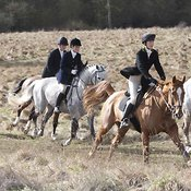 Royal Artillery Hunt & Avon Vale Hunt 03 March 2012