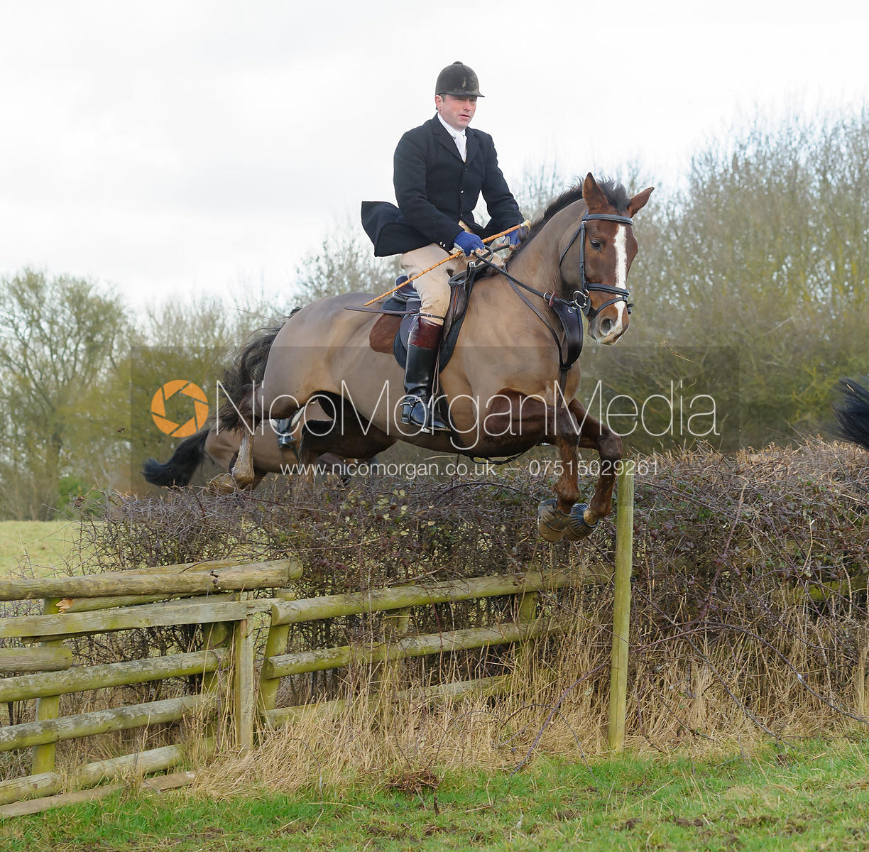 Jamie Collie jumping a hedge with the The Belvoir Hounds at Ingarsby Hall 3/2