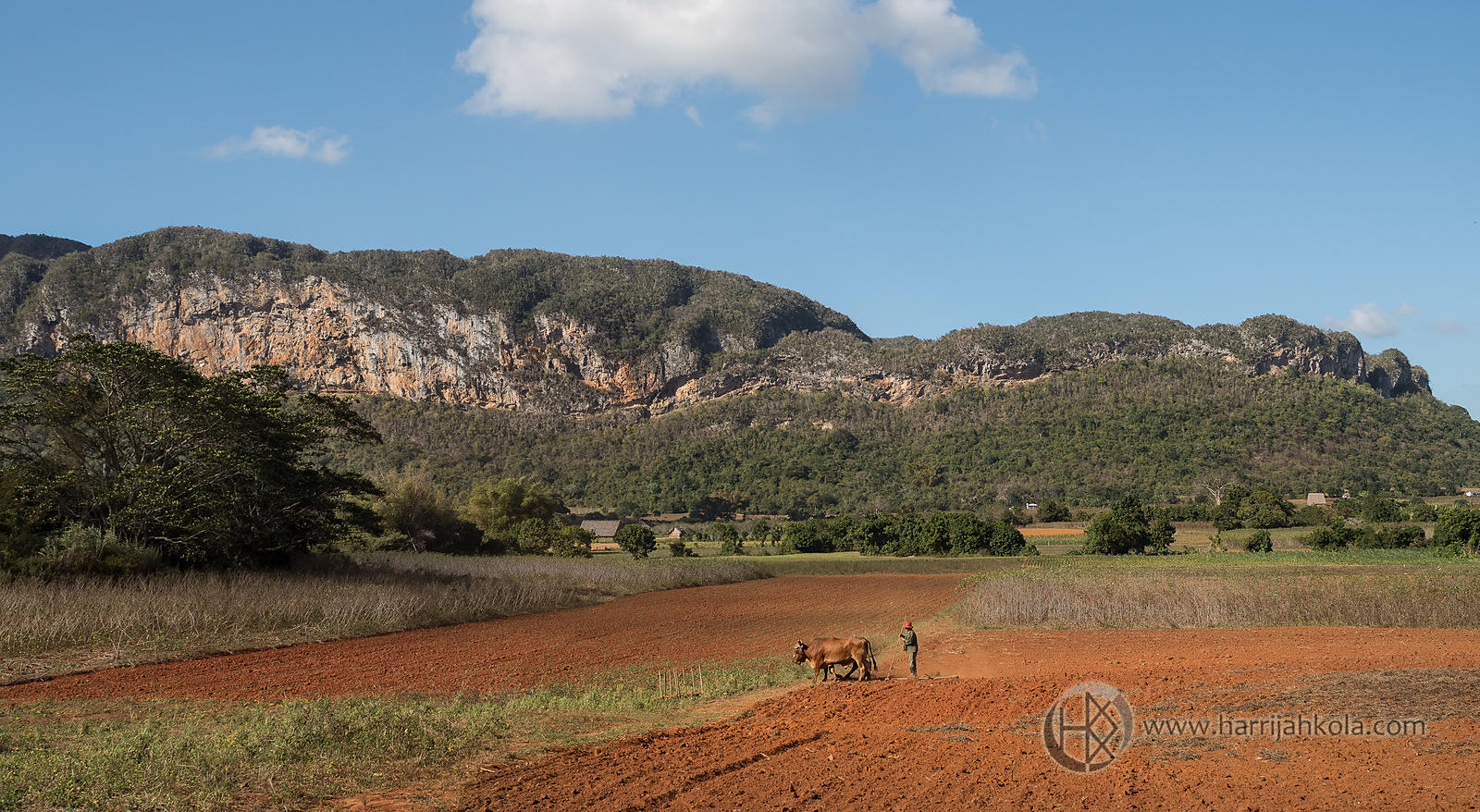 Cuba - Vinales (Tilling the Fields)