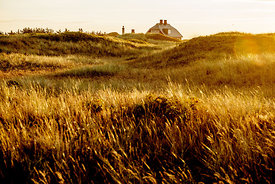 House in the dunes