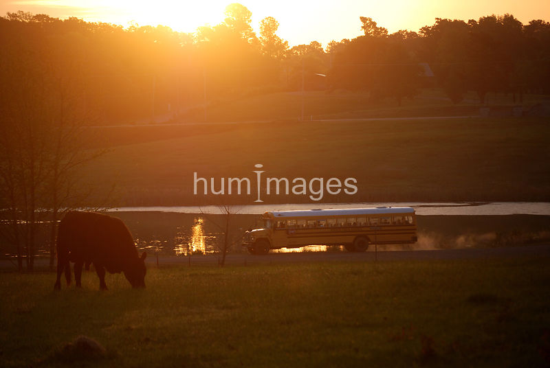 School bus at sunrise in rural Arkansas