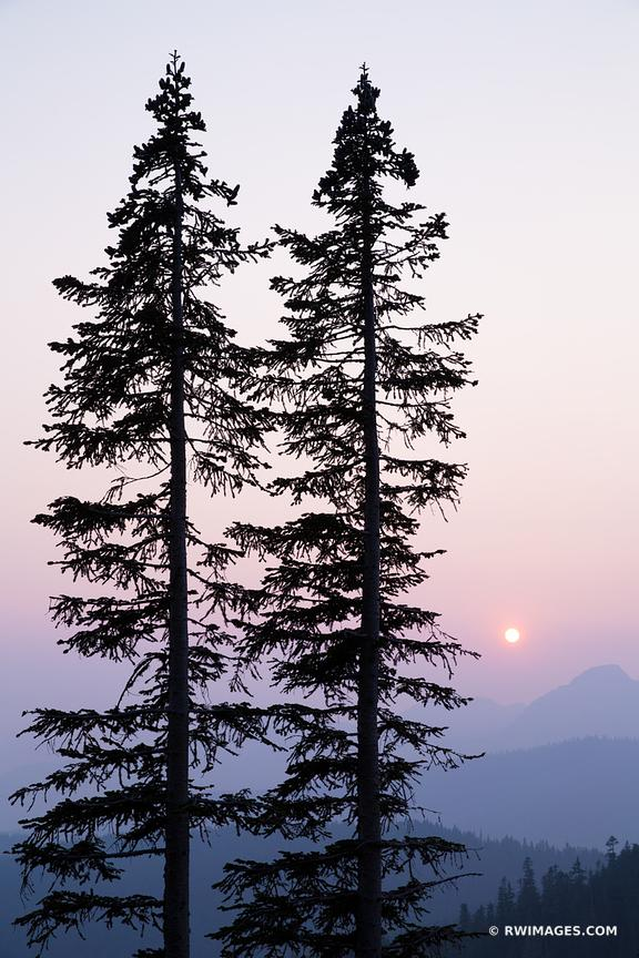 SUNSET MOUNT RAINIER NATIONAL PARK WASHINGTON VERTICAL