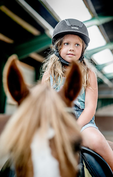 Young Danish girl riding a horse 3