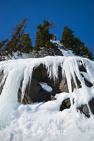 Icicles at a Frozen Seep in Heather Meadows