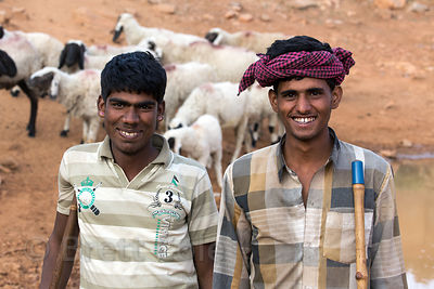 Sheep herders graze their animals in the desert near Kharekhari village, Rajasthan, India