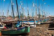 Dhows in the old harbour of Mahajanga, Madagascar
