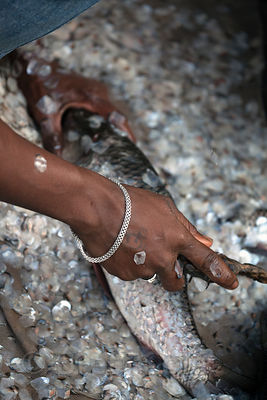 A woman scales fish at Newmarket, Kolkata, India.